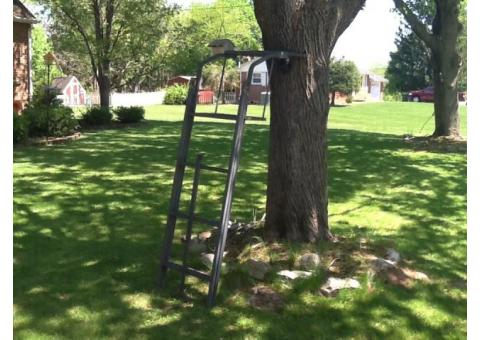 Hunting.   Ladder stand